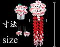 胡蝶蘭 かんざしサイズ